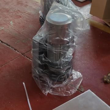 LTD63 LTD80 hoist motor for ZLP630 ZLP800 ZLP1000 suspended gondola